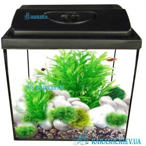 Aquarium-Black-New-Karasik-D286
