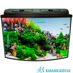 Aquarium-black_New_Karasik-DKarasik_